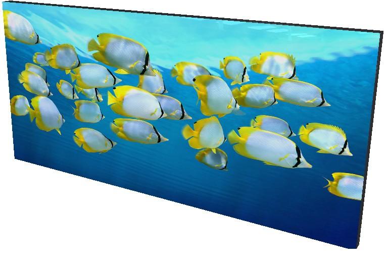 Bajo el Mar 14